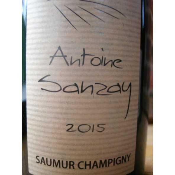 SAUMUR CHAMPIGNY ANTOINE SANZAY 2014