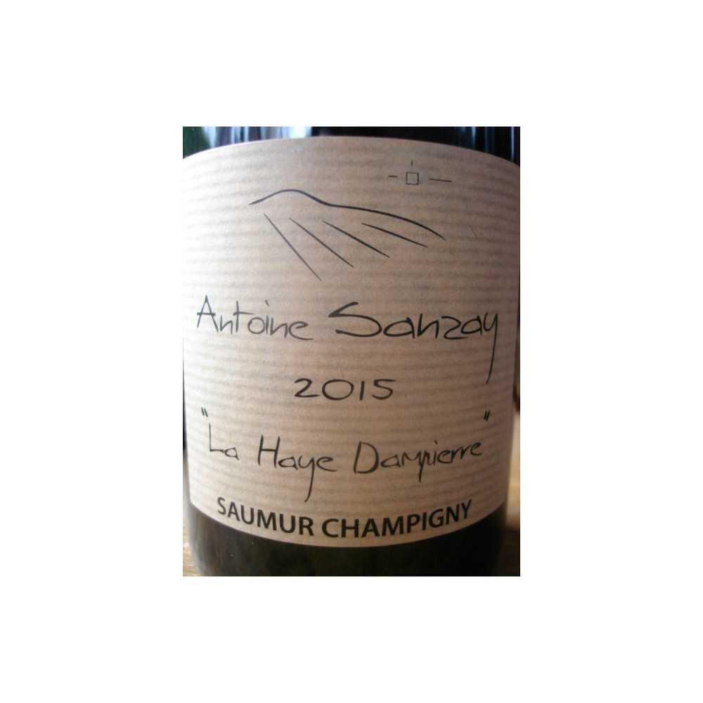 SAUMUR CHAMPIGNY LA HAYE DAMPIERRE ANTOINE SANZAY 2014
